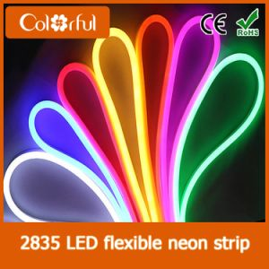 High Quality AC230V SMD2835 LED Neon Flex Rope Light pictures & photos