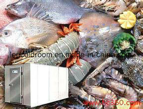 Cold Room for Seafood pictures & photos