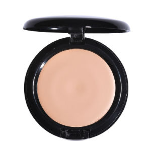 Face Foundation Cream 18g Silky Moisturizing Brighten Makeup Long-Lasting Fo0355 pictures & photos
