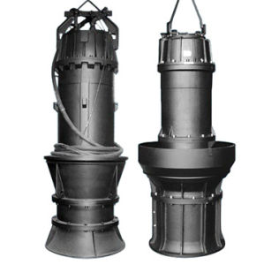 Submersible Axial Flow Pump Sewage Pump pictures & photos