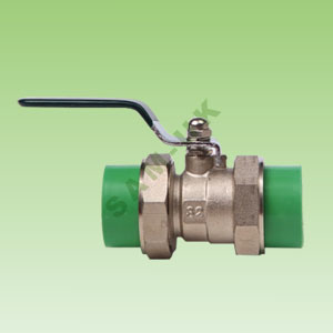 PPR Flexible Brass Ball Valve (B24) pictures & photos