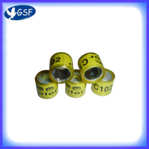 Fashion Foot Ring (GSF-APPR)