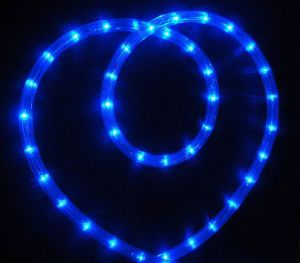 LED Rope Light (SRRLS-2W) pictures & photos
