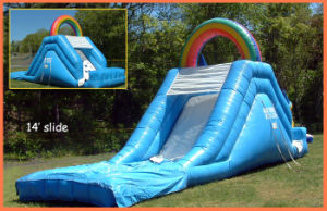 Inflatable Water Slide (FS-711)