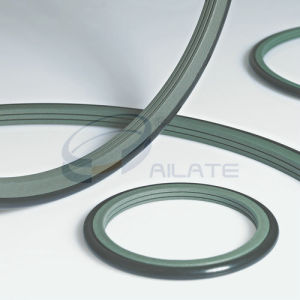 BRS Seal / Hydraulic Rod Step Seals pictures & photos