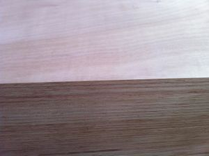 Big Size Plywood pictures & photos