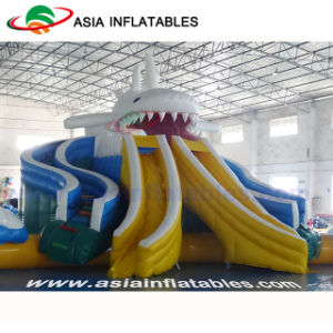 Giant Dragon Slide Inflatable Water Park with Swimming Pool pictures & photos