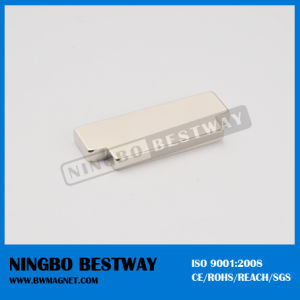 Customized Shape Neodymium Magnet pictures & photos
