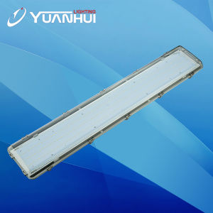 IP65 Vapour Proof LED Lamp RoHS pictures & photos