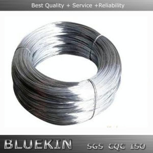 Best Price Galvanized Iron Wire From Factory