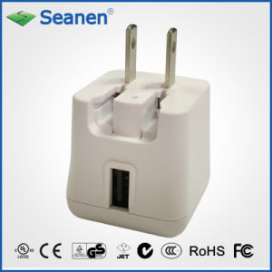 11W USB Charger (RoHS, efficiency level VI) pictures & photos