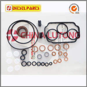 Diesel Ve Pump Seal Kit-Repair Kits for VW, Volvo, Ford pictures & photos