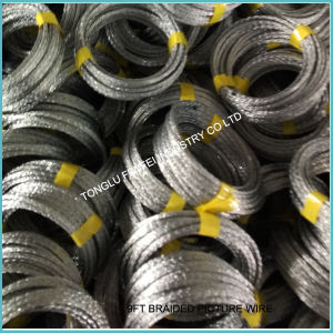 9FT Picture Wire Coil (2001-2008) pictures & photos
