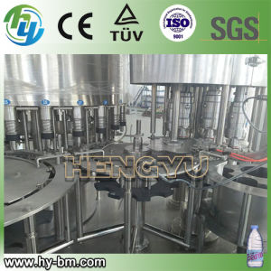 Ce Automatic Bottle Washing Filling Machine pictures & photos