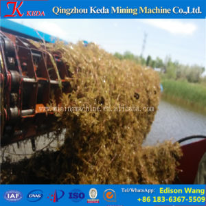 Qingzhou Keda Water Weed Cutting Ship for Sale pictures & photos