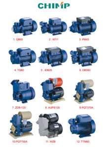 China Top Pump Factory 450W 220-240V Self-Priming Jet Clean Water Pump pictures & photos