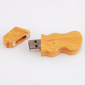 Customized 2g USB Flash Driver with Bamboo Shell pictures & photos
