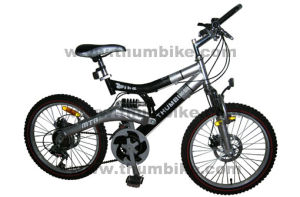 "20""Children Bicycle (TMB-20BE)"