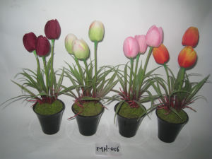 2012 Artificial Flowrs Fake Tulip with Pot for Table Decoration Mh-056