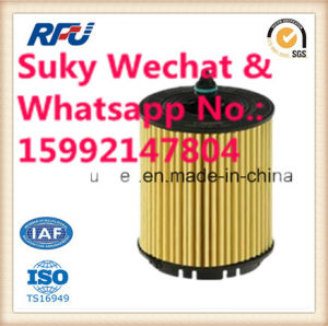 Auto Parts Oil Filter A6611843325 pictures & photos