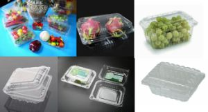 Plastic Blueberry Box Thermoforming Machine pictures & photos