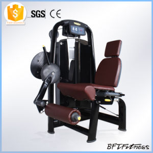 Bodybuilding Sports Equipment/Fitness Equipment/Gym Equipment for Sale (BFT-2015) pictures & photos