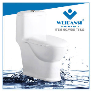 Weidansi Ceramic Siphonic S-Trap One Piece Toilet (WDS-T6123)
