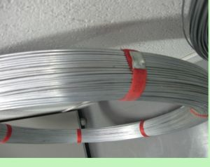 Farm Fence Oval Wire with 2.4 X 3.0mm (17/15) pictures & photos