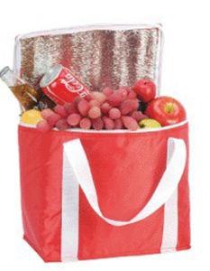 Simple Cooler Bag for Promotion Gift