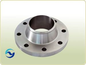 Pipefitting Stainless Steel Pipe Flange