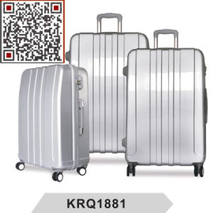 ABS PC Hard Case Travel Trolley Luggage Bags pictures & photos
