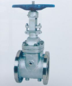 Cast Steel Jacket Gate Valve for Industry
