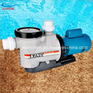 Single /Three Phase Swimming Pool Water Pumps