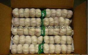 2017 Fresh Pure Garlic for Exporting pictures & photos