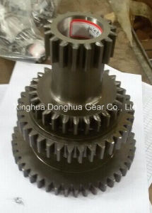 Planetary Gear with Planetary Carrier