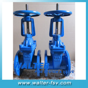 DIN Rising Stem Gate Valve pictures & photos