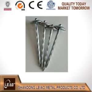 Umbrella Head Roofing Nails pictures & photos