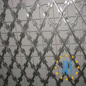 China Military Razor Barbed Wire Welded Wire Mesh Fence - China ...