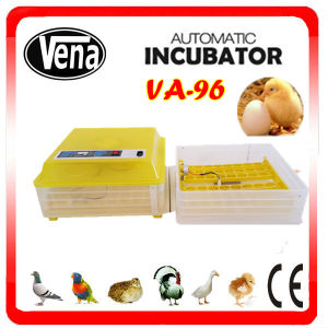 96 Eggs Vena Full Automatic Small Egg Incubator pictures & photos