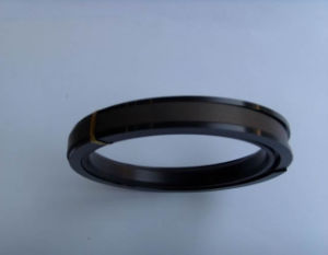 Hydraulic Piston Seal for Excavator (SPGW)
