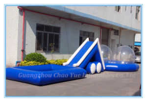 Large Inflatable Water Slide with Pool for Commercial Use (CY-M2139)