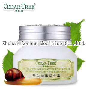 Whitening& Moisturizing Snail Cream for Skin Care pictures & photos