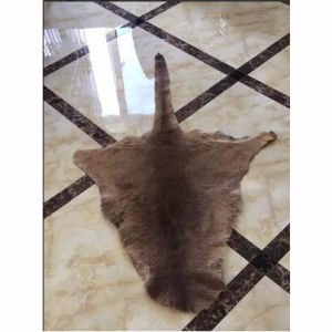 Genuine Australian Kangaroo Skin Rug Hanging Carpet pictures & photos