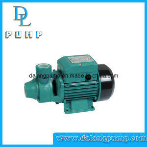 Peripheral Clean Water Pump/ Vortex Pump pictures & photos