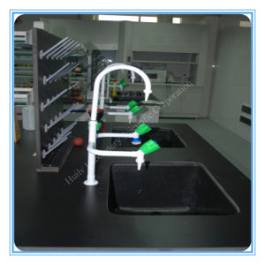 China Three Way Laboratory Faucets Water Tap (HL-SLT011) pictures & photos