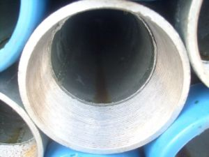 Bs Galvanized Steel Pipe with Thread and Socket