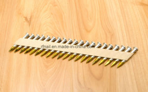 34 Degree Joist Hanger Nails pictures & photos