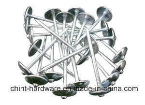 Galvanized Roofing Nail / Roofing Nails / Corrugated Roofing Nails