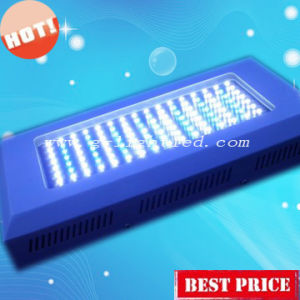 LED Aquarium Light (GL-A-180W)