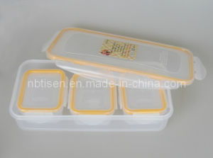 Plastic Lunch Box/Food Storage Container (TS-W3)